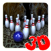 Bowling with Wild 1.48 APK (MOD, Unlimited Money)
