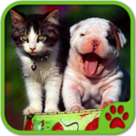 Cats And Dogs Games 5.31.031 APK (MOD, Unlimited Money)