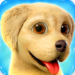 Dog Town: Pet Shop Game, Care & Play with Dog 1.4.45  APK (MOD, Unlimited Money)