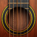 Real Guitar Free – Chords, Tabs & Simulator Games 3.33 APK (MOD, Unlimited Money)