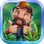 CannaFarm Weed Farming Collection Game 2.0.905 APK (MOD, Unlimited Money)