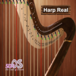 Harp Real  APK (MOD, Unlimited Money) 1.1.1