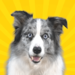 Real Pets™ by Fruwee APK (MOD, Unlimited Money) 297