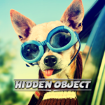 Hidden Object – Travelling Pets 1.0.0 APK (MOD, Unlimited Money)