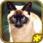 Cat Jigsaw Puzzles 50.0.50 APK (MOD, Unlimited Money)