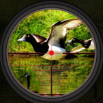 Duck Hunting 2019 – Real Wild Adventure Shooting 1.0 APK (MOD, Unlimited Money)