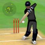 Smashing Cricket – a cricket game like none other 2.9.9 APK (MOD, Unlimited Money)