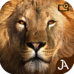 Safari: Online Evolution 20.9.2 APK (MOD, Unlimited Money)