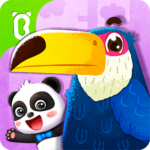 Baby Panda's Bird Kingdom  8.52.00.00 APK (MOD, Unlimited Money)