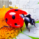 Insect Jigsaw Puzzles Game – For Kids & Adults 🐞 25.2  APK (MOD, Unlimited Money)