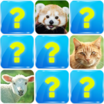 Memory Game: Animals 6.3 APK (MOD, Unlimited Money)