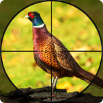 Pheasant Shooter: Crossbow Birds Hunting FPS Games 1.1 APK (MOD, Unlimited Money)