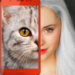 Kittens: what cat are you? prank 2.7 APK (MOD, Unlimited Money)