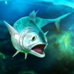 TAP SPORTS Fishing Game 6.0.0 APK (MOD, Unlimited Money)